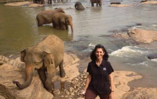 Dental Care International (DCI) mobile dental clinic tour. Volunteer poses with elephants.